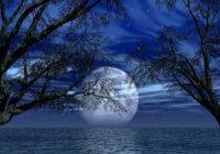 Mēness fāžu skaistuma horoskops nedēļai (23.02-01.03)