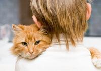 Šo interesanto faktu par kaķiem tu iespējams neesi dzirdējis…