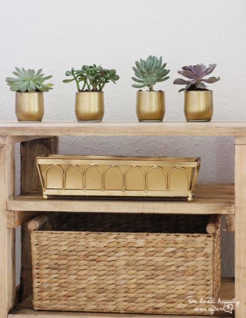 1435852038-1435004520-succulent-gold-vases-dollar-store