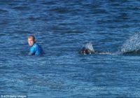 Uzzini, kā sērfotājs paglābās no haizivs, kas centās viņam uzbrukt