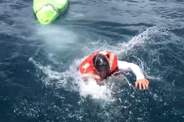 Shark-Capsizes-Boat