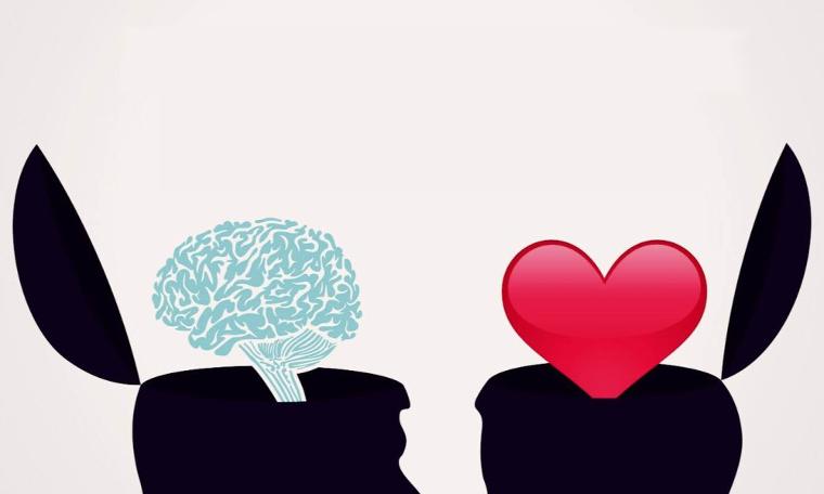 sirds, prāts
