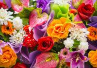 Narcise, roze, krizantēma? Uzzini savu ziedu horoskopu!