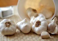 6 ārstnieciskas receptes ar vērtīgo ķiploku – ķiploks veselībai katru dienu