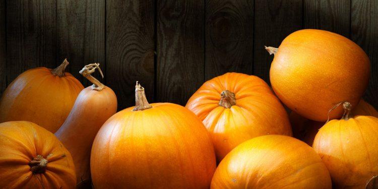 pumpkin-harvest-090716