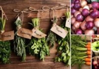 Pēc šī raksta izlasīšanas, ŠOS svaigos augļus, dārzeņus un gauršaugus vairs neglabāsi kopā!