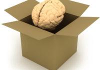 20 interesanti fakti par smadzenēm – #14 pārsteigs!