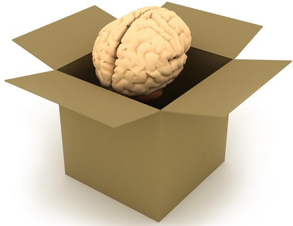 smadzenkaste