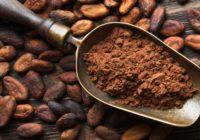 Vērtīgākās kakao īpašības: uzlabo ādas stāvokli un palīdz notievēt!
