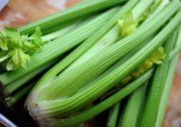 Selerija veselībai: superprodukts organisma attīrīšanai. 6 receptes iedvesmai