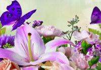 Nedēļas horoskops no 6. līdz 12. martam – uzzini savas veiksmīgās dienas!