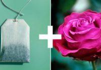 11 attapīgi veidi, kā izmantot tējas maisiņus