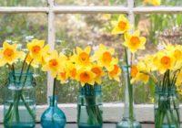 Nedēļas horoskops no 17. līdz 23. aprīlim – uzzini savas veiksmīgās dienas!
