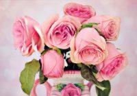 Mīlestības horoskops nedēļai: 26.marts – 1.aprīlis: neieciklējieties uz pagātni
