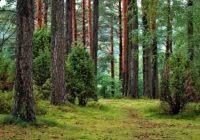 Rāznas ceļotāju dienā simtiem viesu iepazīst Latgales dabas un kultūras bagātības