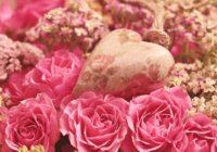 9 zīmes, ka drīz jūs satiksiet mīlestību